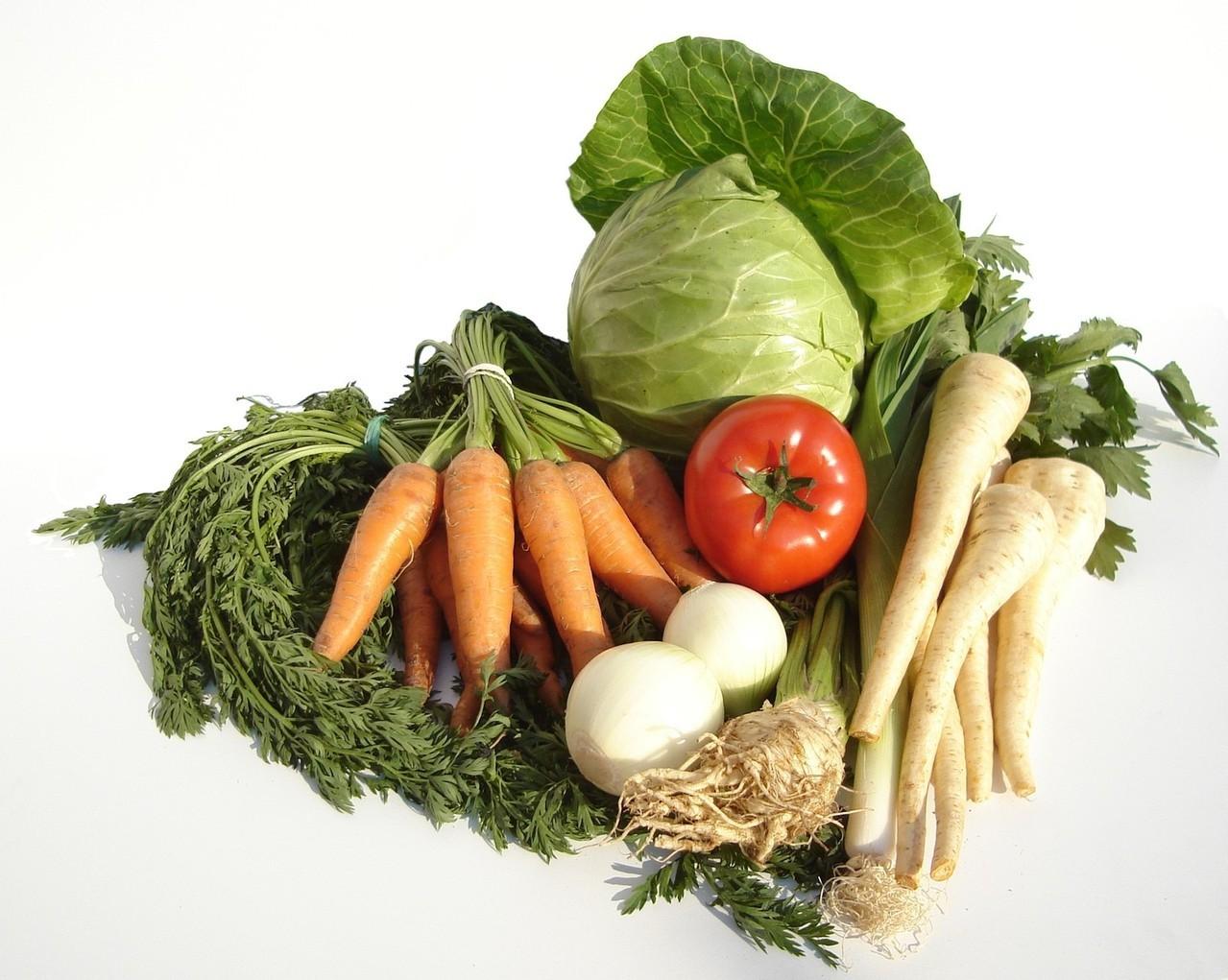 Promuj wegetarianizm. Koszulki i Internet